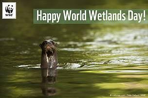 Čuvajmo prirodu i njen živi svet!. Fotografija preuzeta sa sajta www.wwf.rs
