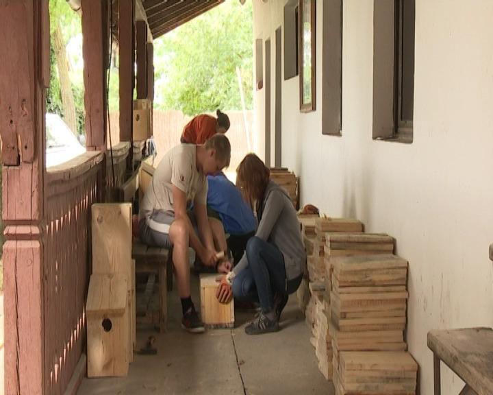 Volonterski radni kamp Ludaš 2016.