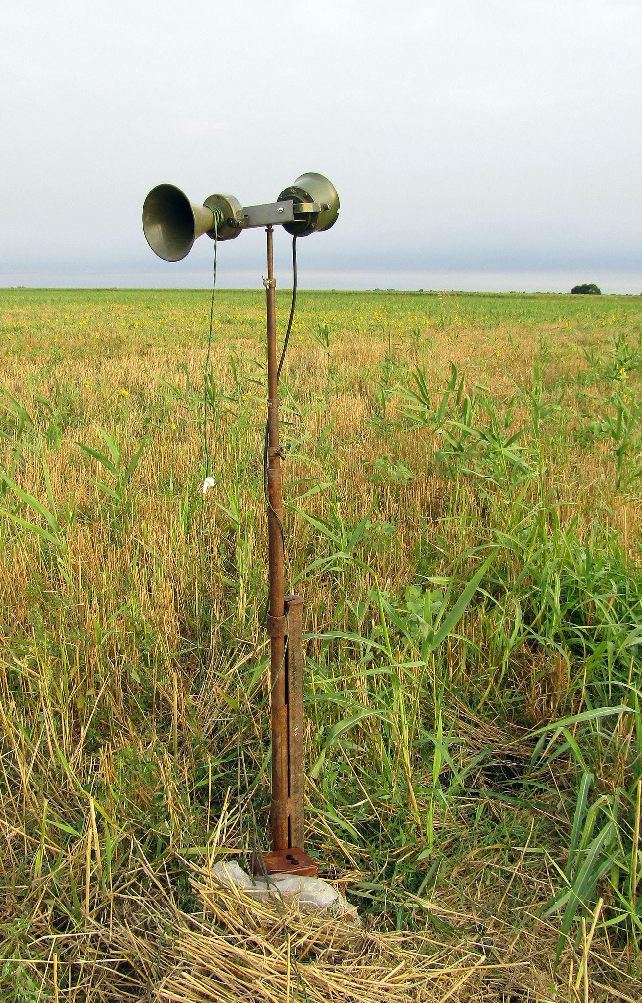 Fotografije sa terena: Mokrin. Foto: Društvo za zaštitu ptica.