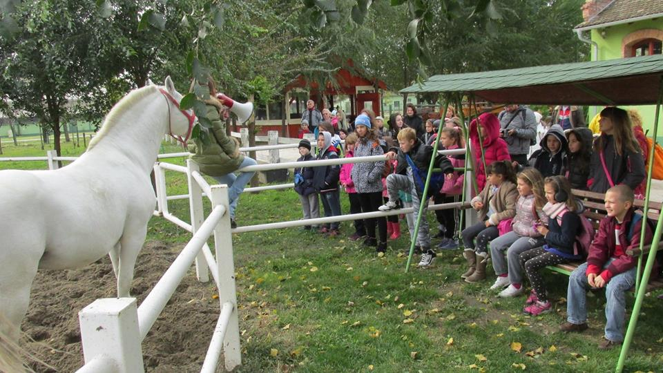 Mališani su posetili i ergelu konja, bebi-farmu, videli razne druge životinje