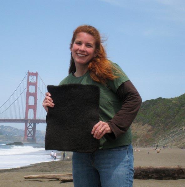 Lisa Kraig Gutier http://matteroftrust.org/297/clean-wave-program