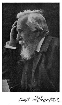 Ernest Hekel: rodočelnik ekologije